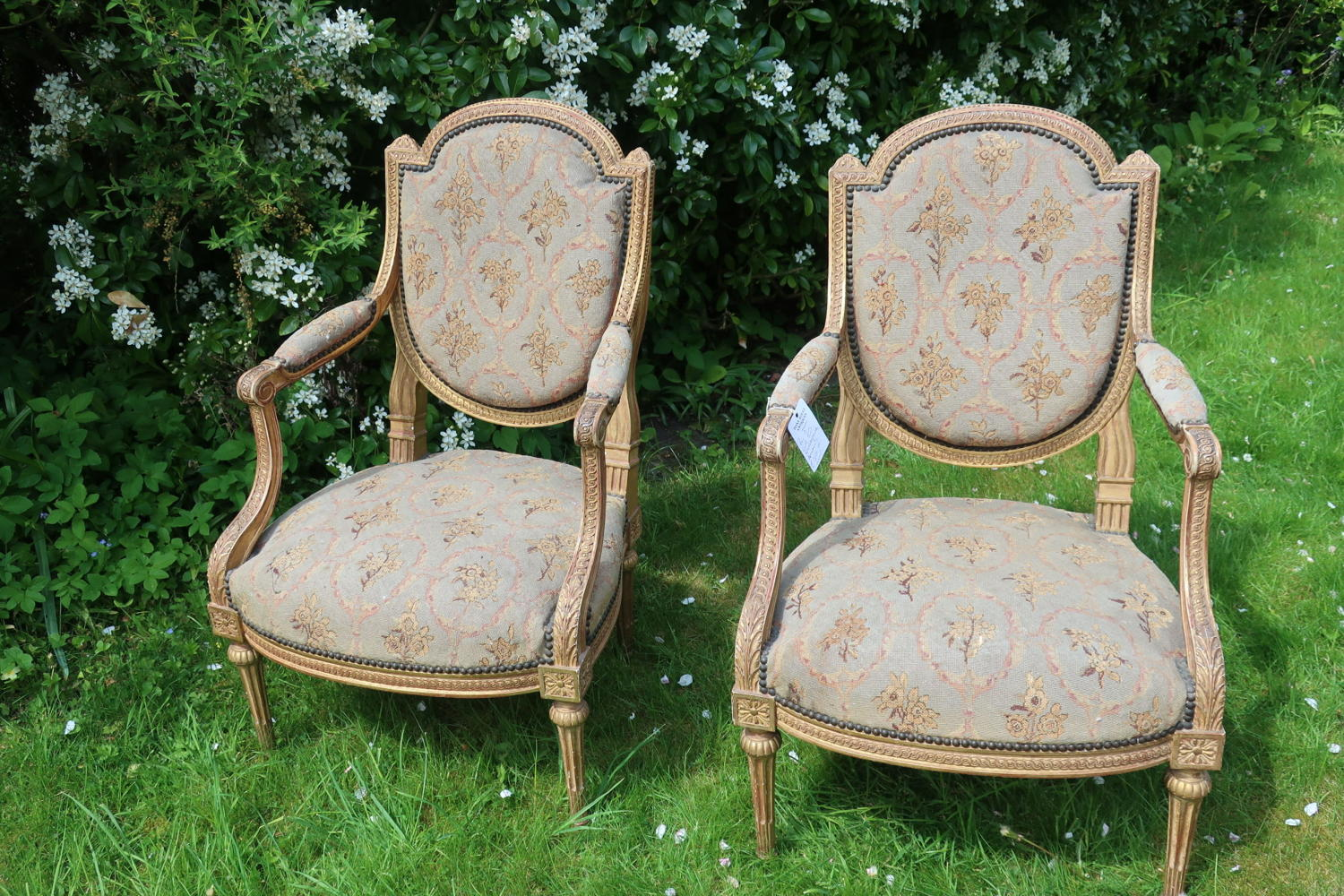 Pair of gilt needlepoint armchairs