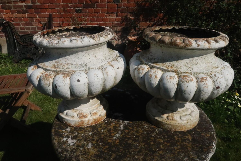 Pair of 19th Century garden urns