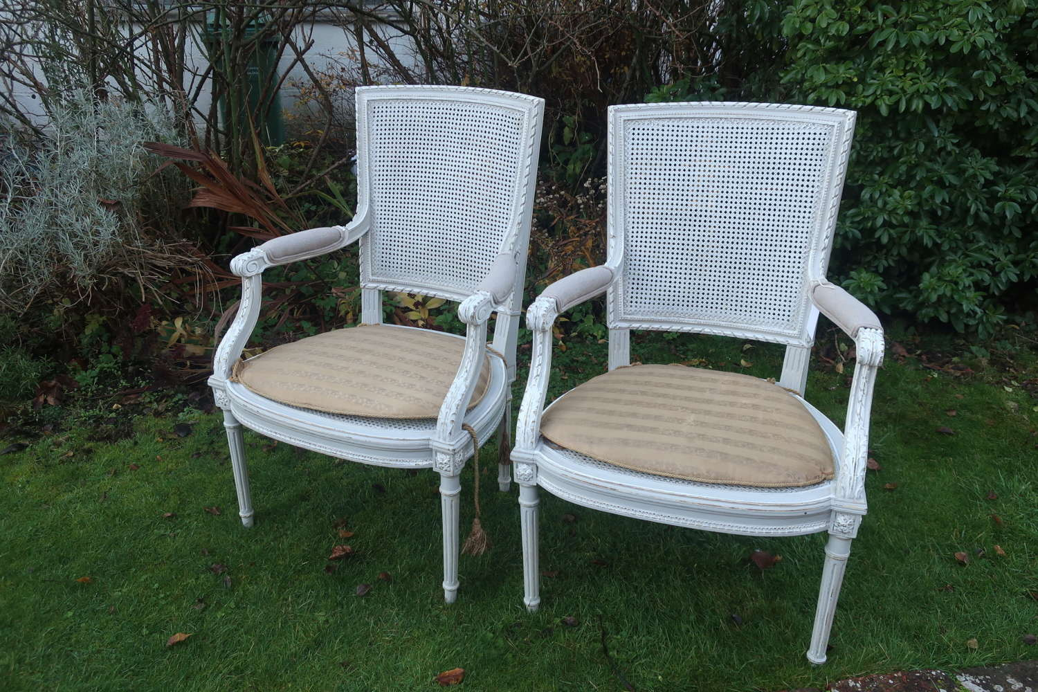 Pair of cane Armchairs