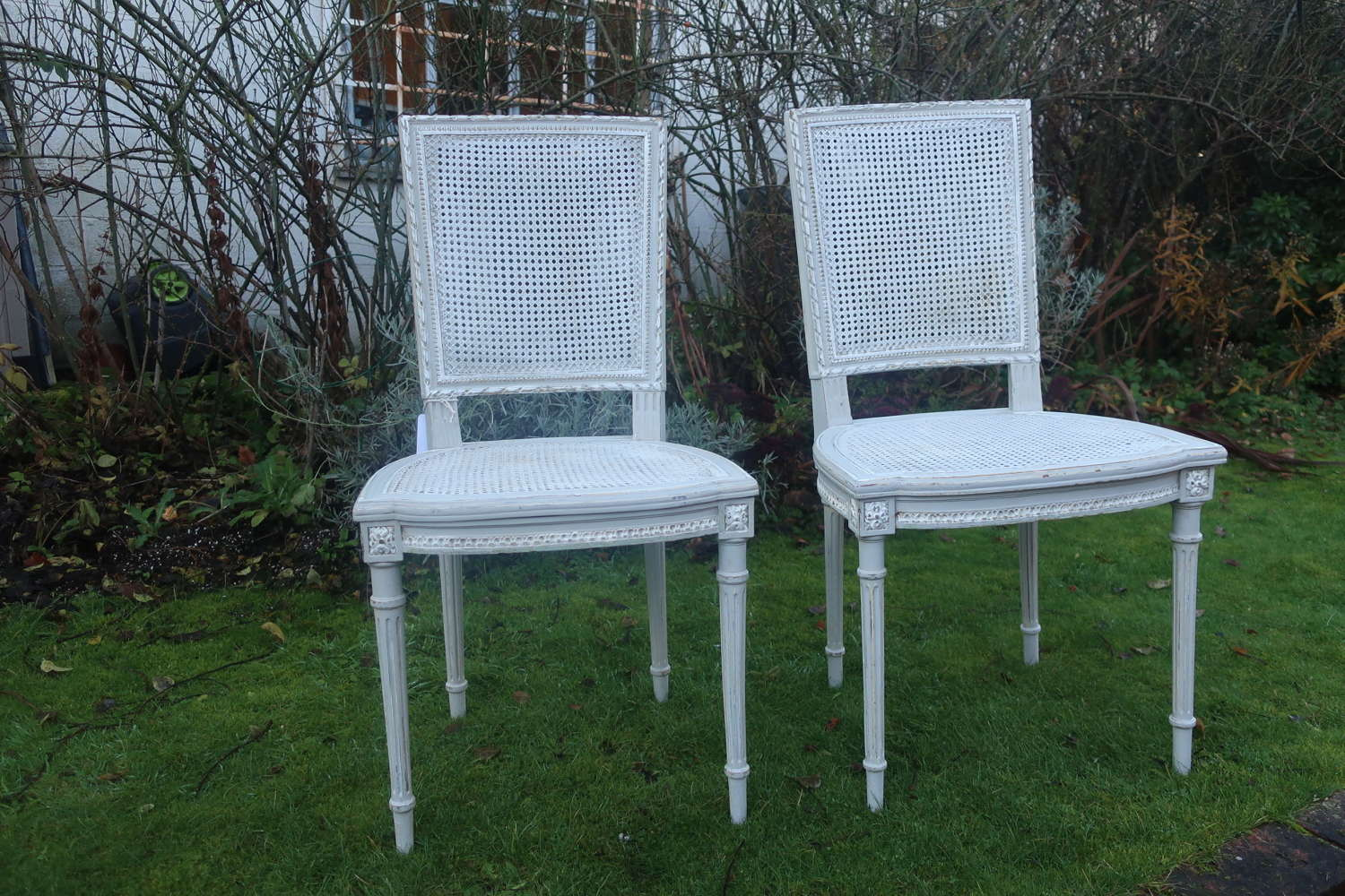 Pair of cane chairs