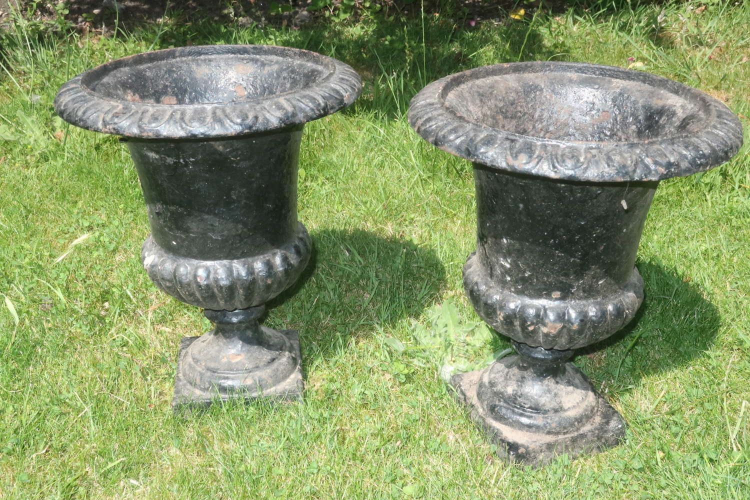 Pair of caste iron jardinieres